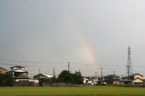雨上がりには虹が。