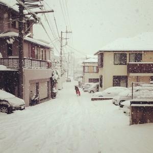 突然の大雪!