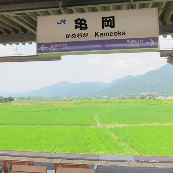59_本当に緑がキレイな亀岡でした