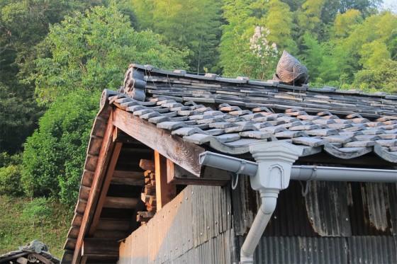 01_上下町の朝散歩_キュートな屋根瓦