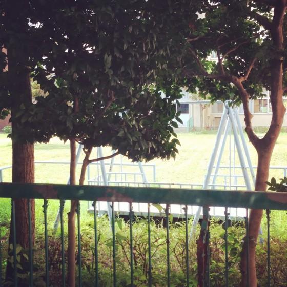 02_懐かしい中庭