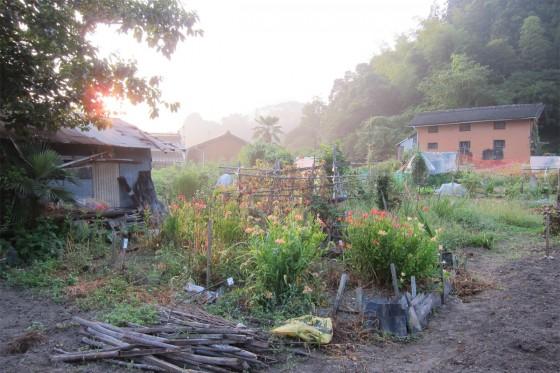 03_上下町の朝散歩_朝もやの向こうの山