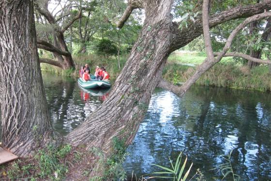 34_大王わさび農場でクリアボートに乗ります