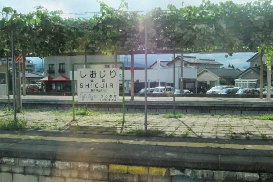 10_ホームにぶどうの木柵がある塩尻駅も過ぎ