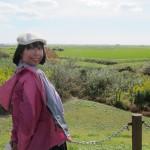 八郎潟の世界一低い山