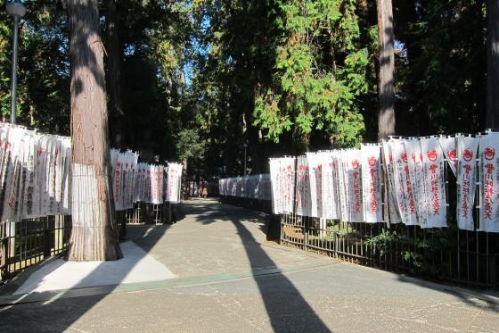 11_豊川稲荷にお礼のお参り13