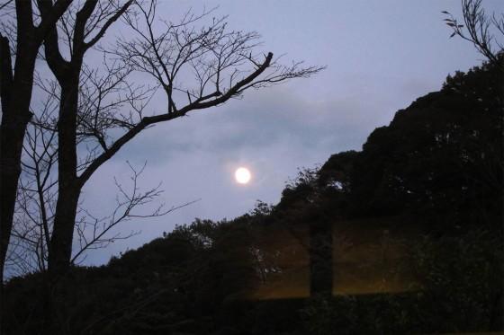41_満月に近い月
