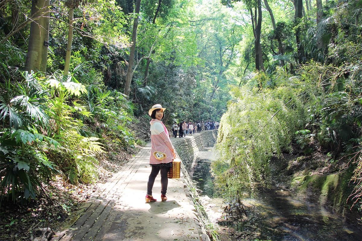 ゴールデンウイークは新緑の等々力渓谷へ行きました