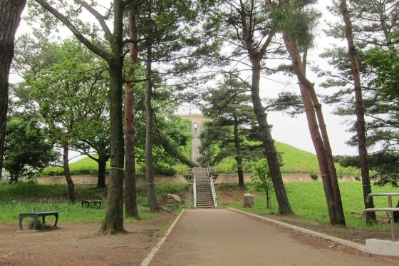 06_あれが川和富士公園だ!
