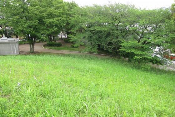 18_川和富士公園、とってもステキでした