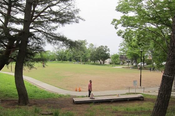 05_時間までちょっと、川和富士公園を散歩