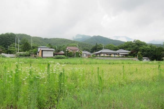 27_素敵な田園風景が広がります