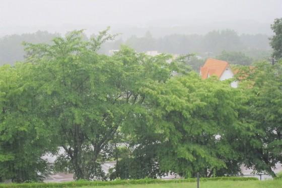 01_朝は大雨