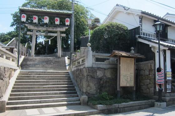 15_阿智神社にしましまの大きなセミ