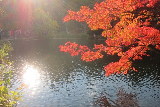 31_美しい日本の風景ですね