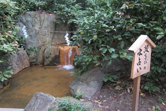 19_生田神社の縁結びの水占い