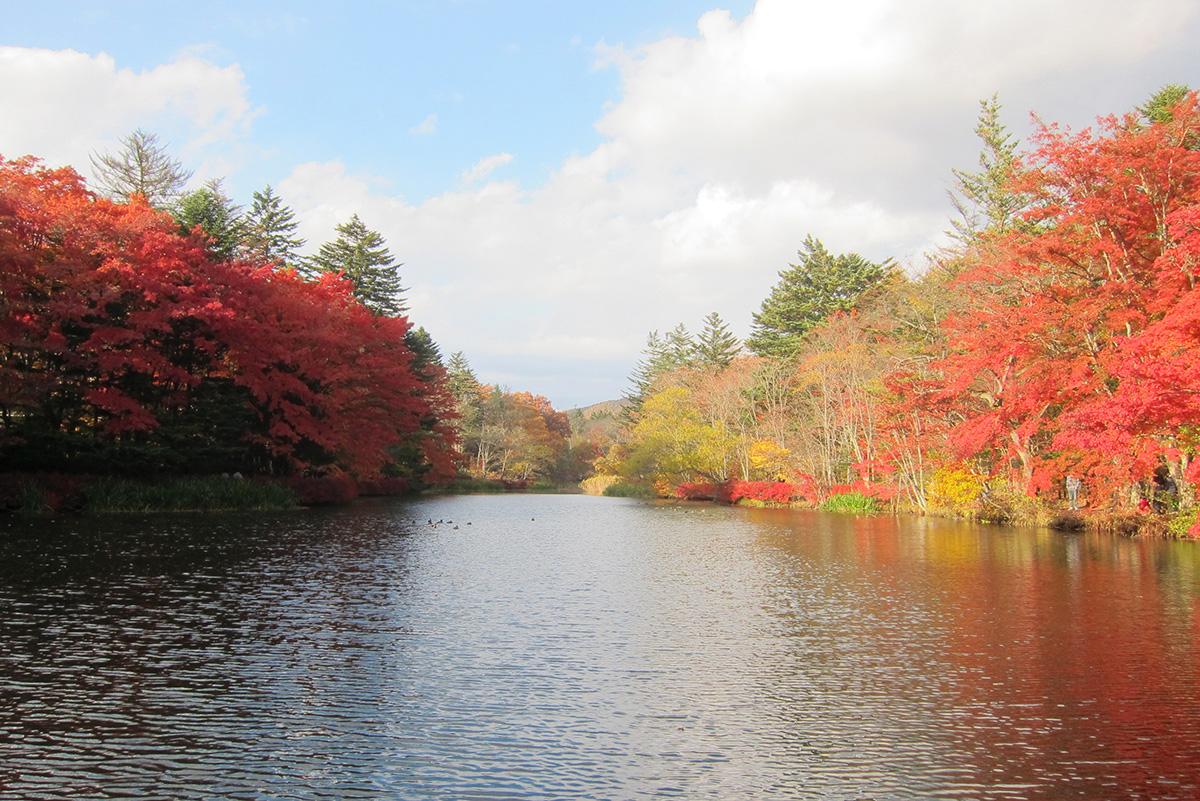 30_雲場池も最高の紅葉と天気!1200