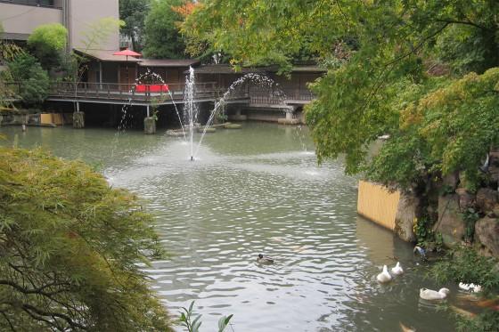 22_生田神社の池