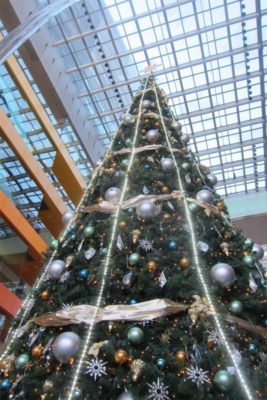 15_二子玉川駅のクリスマスツリー