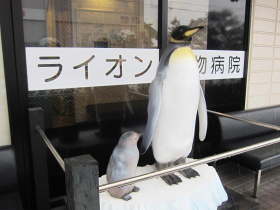 15_ペンギンなのにライオン動物病院?