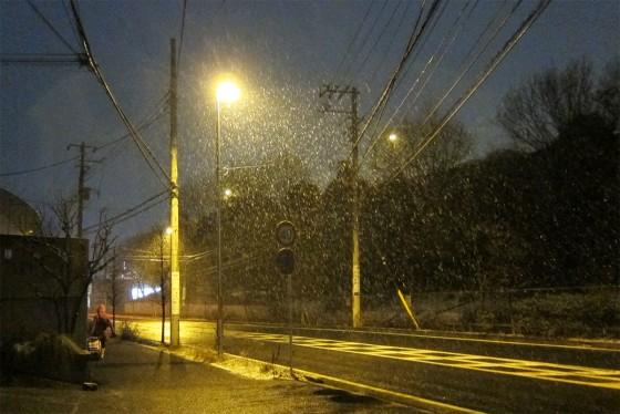 02_雪が降っております