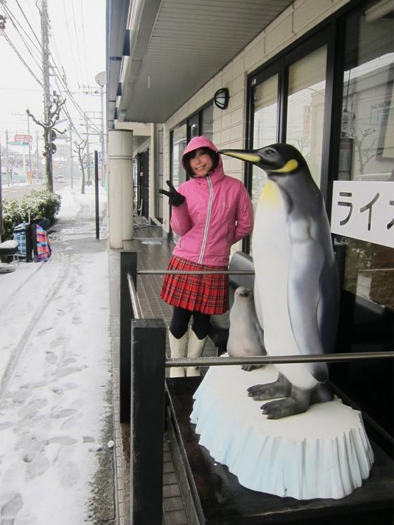 14_雪降ったのでペンギンも嬉しそう?