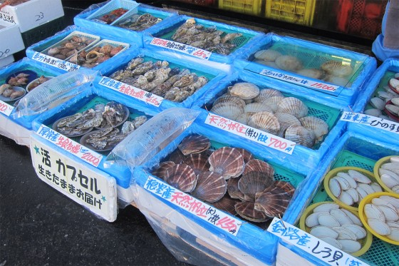 22_ホタテやカキなど貝類がズラリ