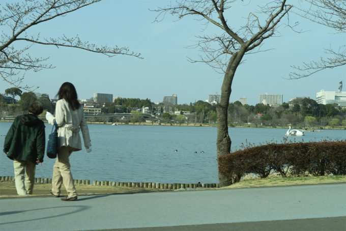 63_千波湖のスワンボート