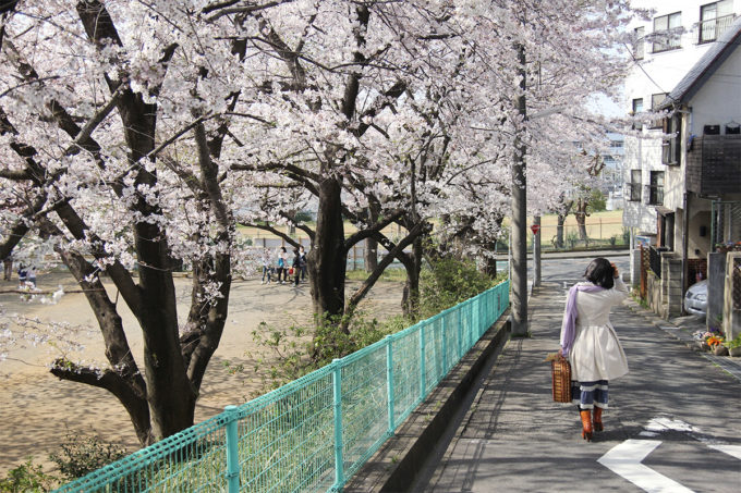 鷺沼お花見ピクニック2015-02