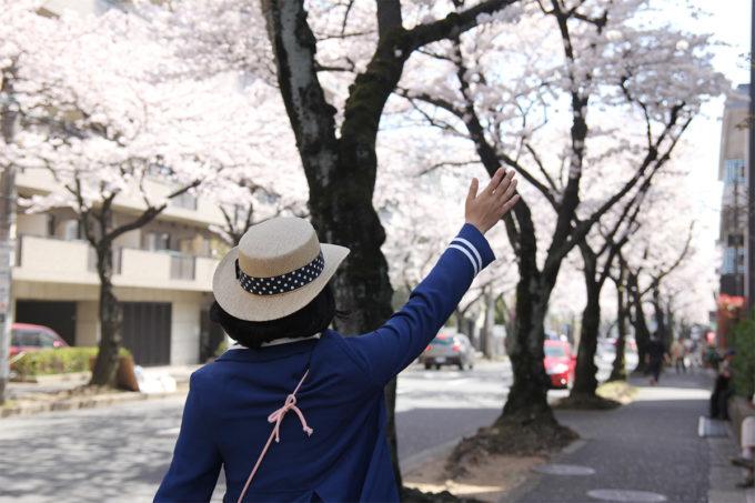 鷺沼お花見ピクニック20150331-05