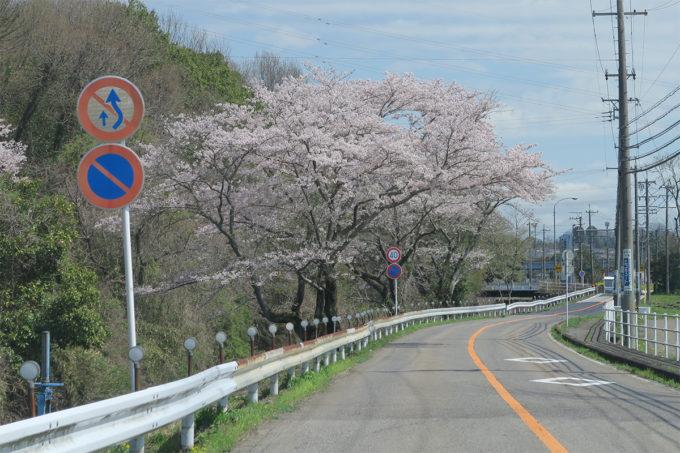10_川沿いの道