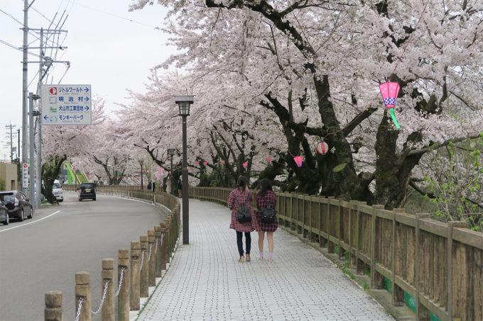 46_広くて歩きやすい良い歩道です