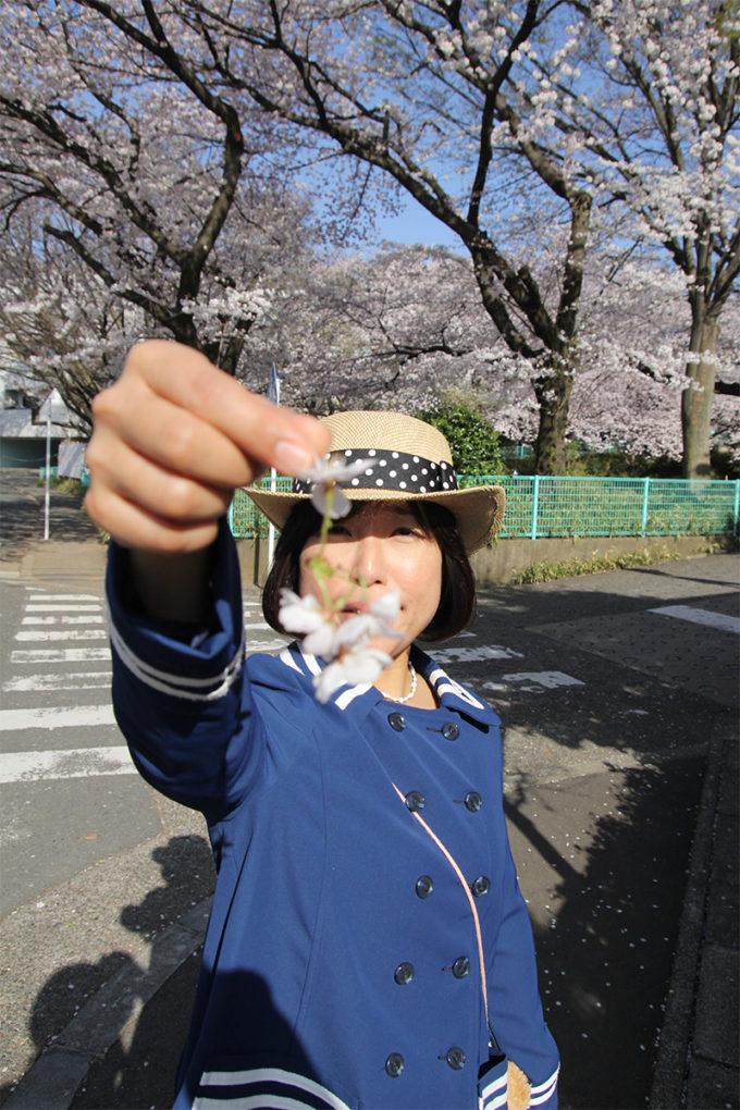 鷺沼お花見ピクニック20150331-35