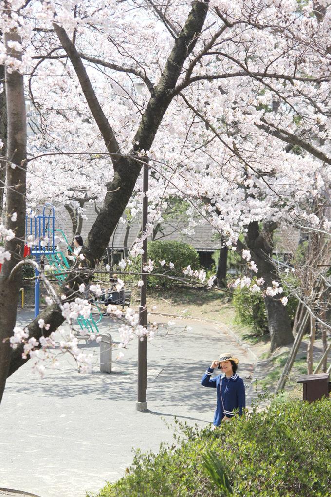 鷺沼お花見ピクニック20150331-10