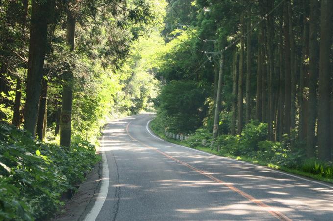 31_弥彦山スカイラインへ