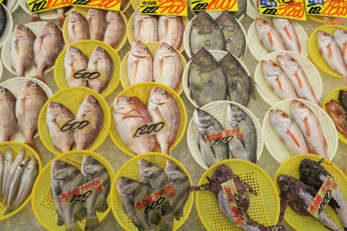 15_新鮮な魚介類が並びます