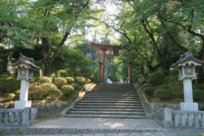49_弥彦神社に来ました