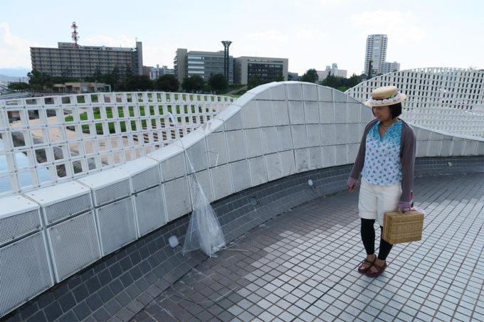 13_つい先日の台風の残骸