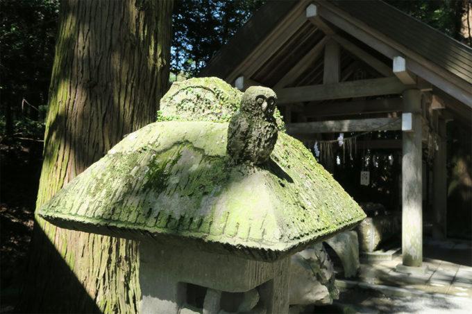 74_ふくろうの石灯籠