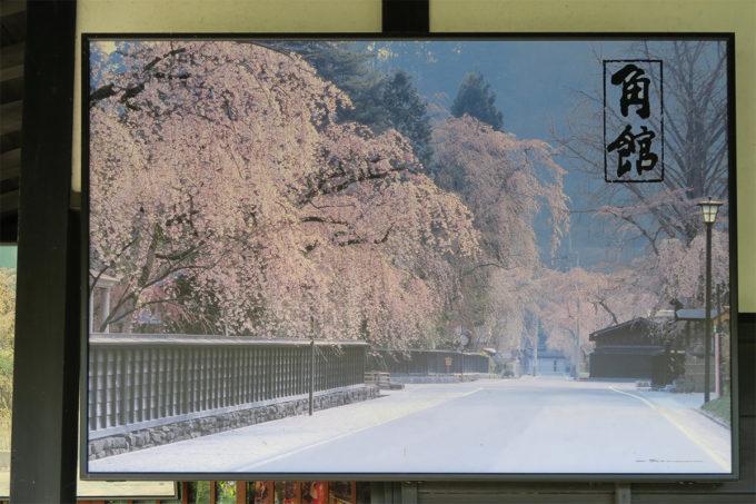29_桜の季節にも来てみたいな
