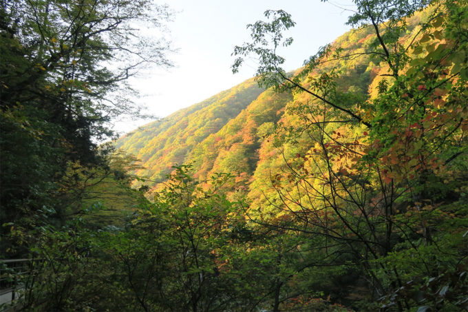 60_ますます美しい紅葉の山