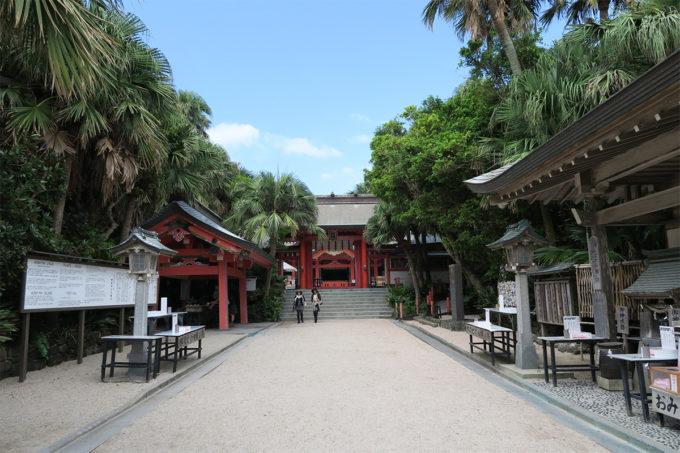 29_青島神社は南国風