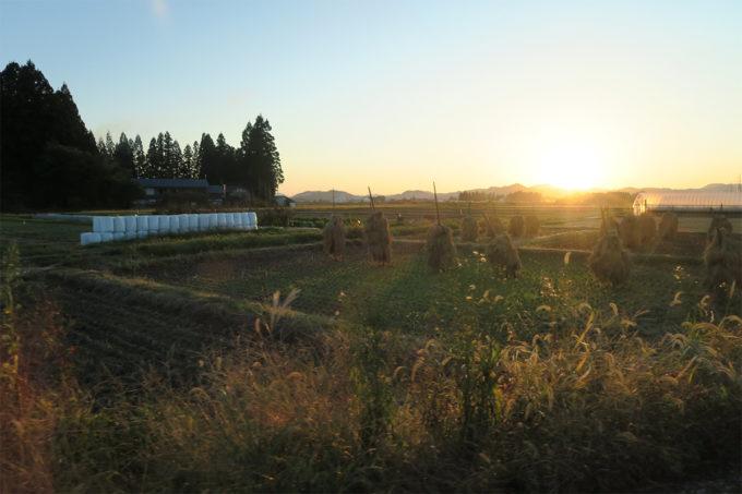 69_秋田の11月の田園風景