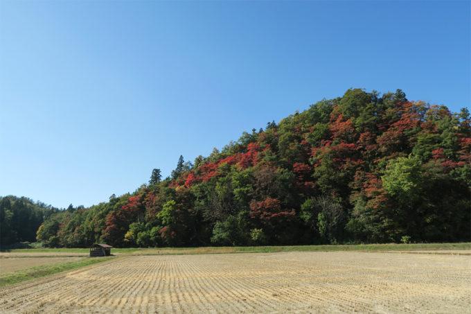 15_抱返り渓谷に匹敵する美しい紅葉