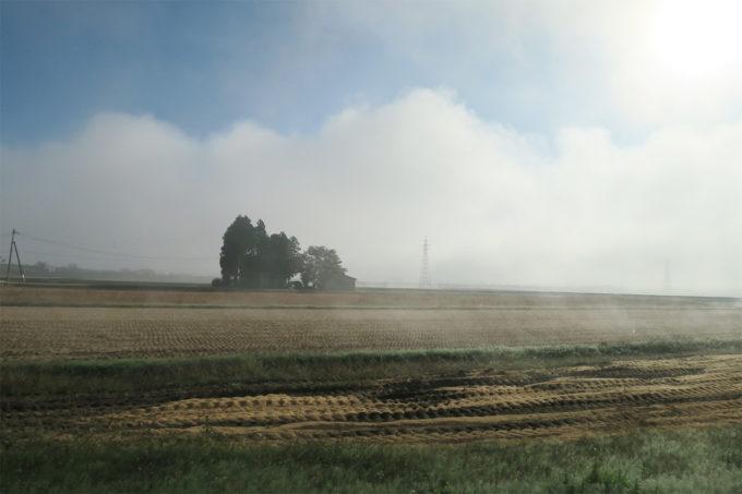 03_田んぼと霧