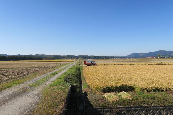 16_美しい田園風景
