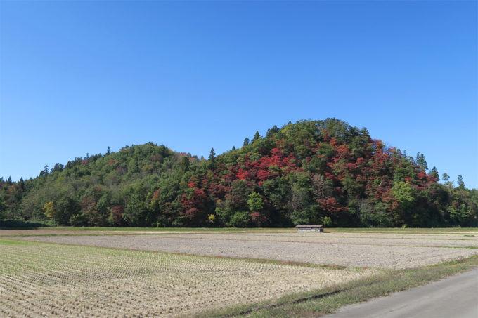 14_紅葉が綺麗な小山