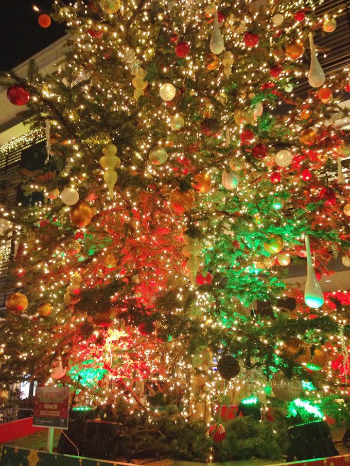 たまプラーザのクリスマスツリー