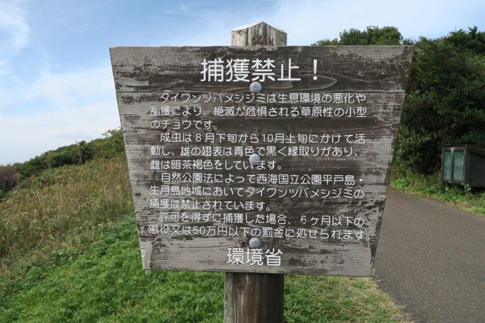 25_捕獲禁止!