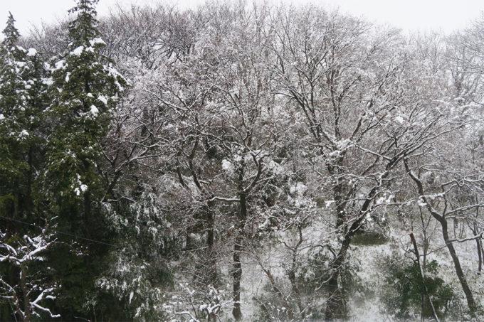 01_前日の大雪